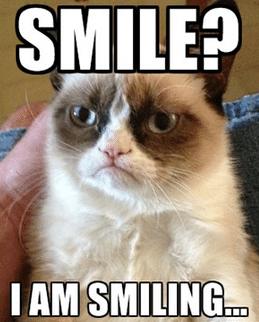 grumpy cat - Social media campaigns that rock