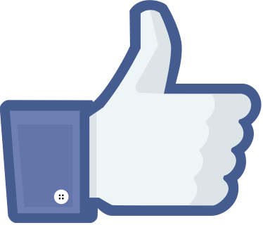 fb like icon - Facebook Offers fall short of digital marketing perfection